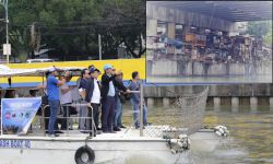CIMATU SPOTS CLUSTERS OF ISFs ALONG PASIG RIVER