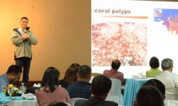 BENEFITS OF CORAL REEFS